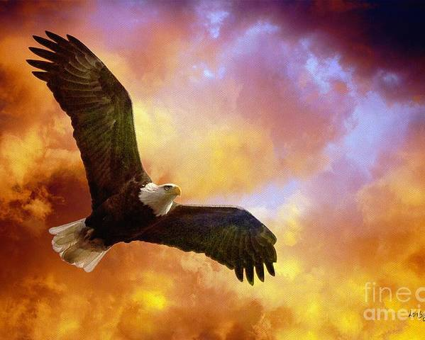 Eagle Poster featuring the photograph Perseverance by Lois Bryan