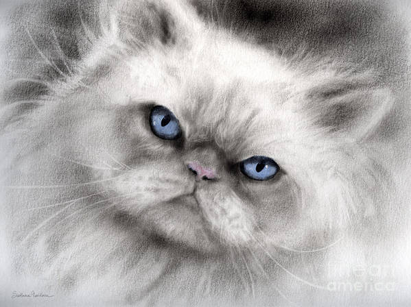 Persian Cat Poster featuring the painting Persian Cat With Blue Eyes by Svetlana Novikova