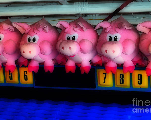 Fair Poster featuring the photograph Piggy Race by Skip Willits