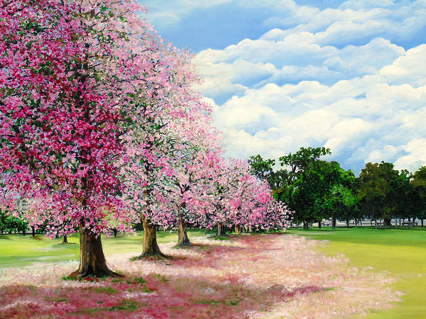 Pink Poui Trees Poster featuring the painting Pink Savannah Poui by Karin Dawn Kelshall- Best