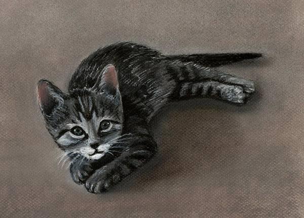 Cat Poster featuring the painting Playful Kitten by Anastasiya Malakhova