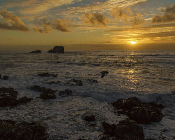 Beach Poster featuring the photograph Point Piedras Blancas Sunset by Jim Moss