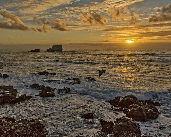 Beach Poster featuring the photograph Point Piedras Blancas Sunset Variation by Jim Moss