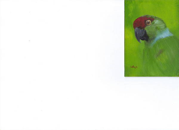 Parrots Poster featuring the painting Polly by Catherine Swerediuk