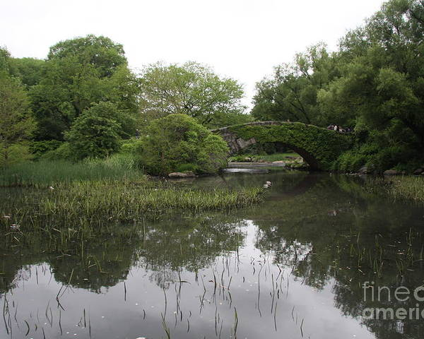 Pond Poster featuring the photograph Pond And Bridge by Christiane Schulze Art And Photography