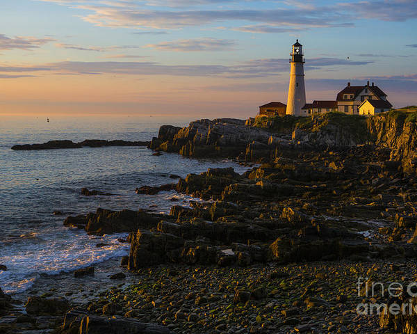 Portland Head Lighthouse Poster featuring the photograph Portland Head Lighthouse At Dawn by Diane Diederich