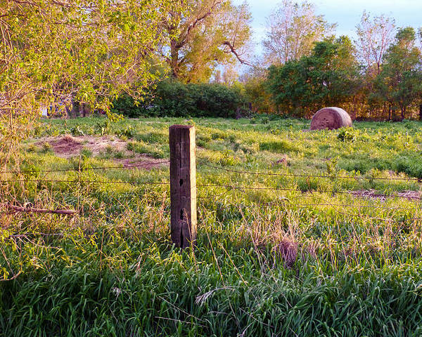 Spring Poster featuring the photograph Post And Haybale by Tracy Salava