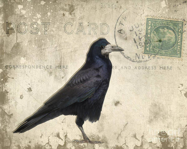 Raven Poster featuring the photograph Post Card Nevermore by Edward Fielding
