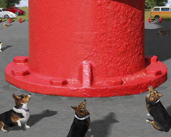 Corgis Poster featuring the photograph Postcards From Otis - The Hydrant by Mike McGlothlen