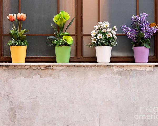 Istanbul Poster featuring the photograph Potted Flowers 01 by Rick Piper Photography