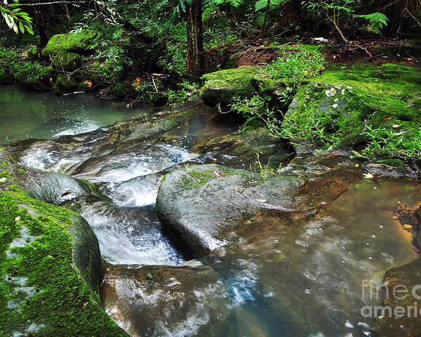 Photography Poster featuring the photograph Pretty Green Creek by Kaye Menner
