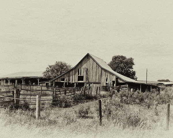 Barn Poster featuring the photograph Puckerbrush Rd Barn by Wilma Birdwell
