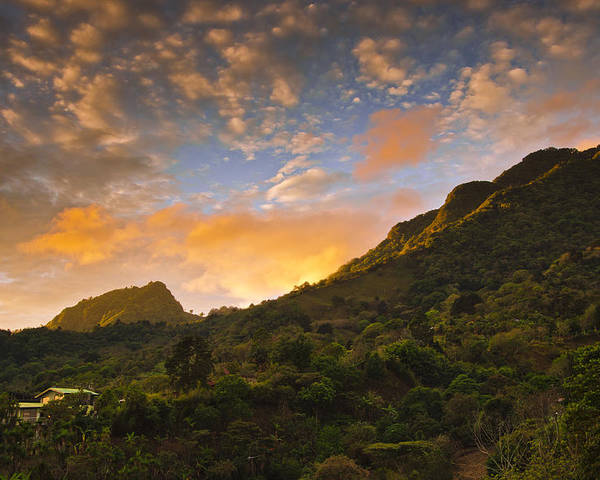 Jungle Poster featuring the photograph Pura Vida Costa Rica by Aaron Bedell