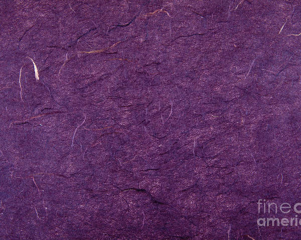 Copy Space Poster featuring the photograph Purple Mulberry Paper by Jim Pruitt