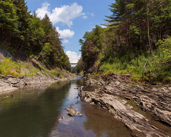 Tree Poster featuring the photograph Quechee Gorge by John M Bailey