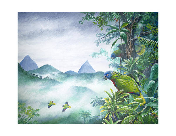 Chris Cox Poster featuring the painting Rainforest Realm - St. Lucia Parrots by Christopher Cox
