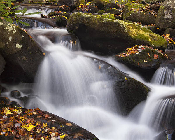Waterfall Poster featuring the photograph Rapids At Autumn by Andrew Soundarajan