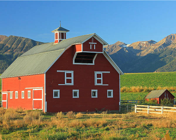 Fall Colors Poster featuring the photograph Dn5939-red Barn In The Wallowas by Ed Cooper Photography