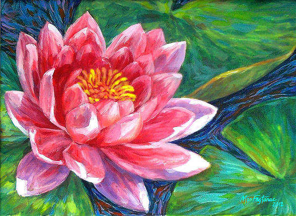 Red Lotus Flower Poster By Mon Fagtanac