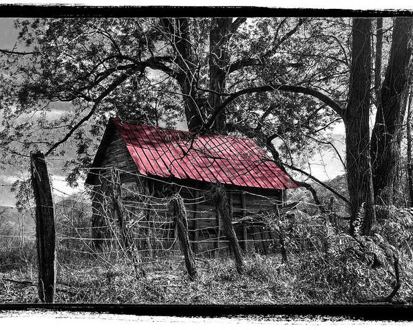 Andrews Poster featuring the photograph Red Roof by Debra and Dave Vanderlaan