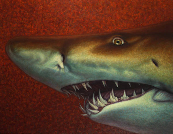 Shark Poster featuring the painting Red Sea Shark by James W Johnson