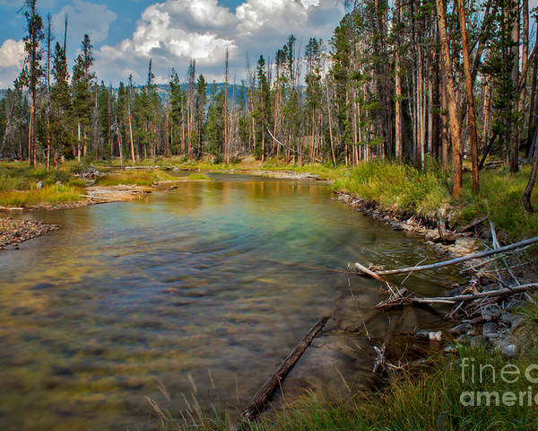 Rocky Mountains Poster featuring the photograph Redfish Lake Creek by Robert Bales