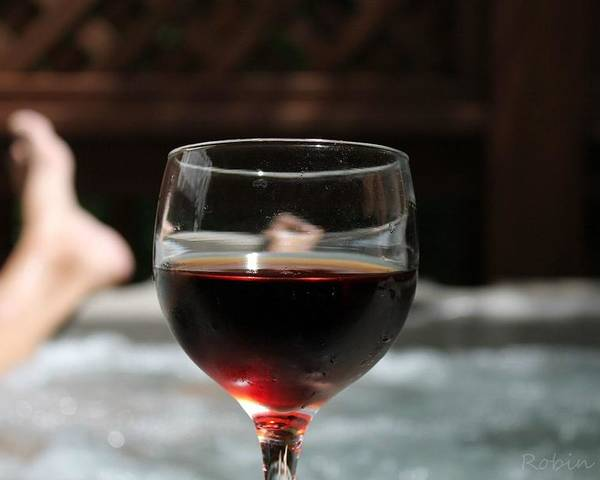 Wine Glass Poster featuring the photograph Relaxing In The Hot Tub by Robin Vargo