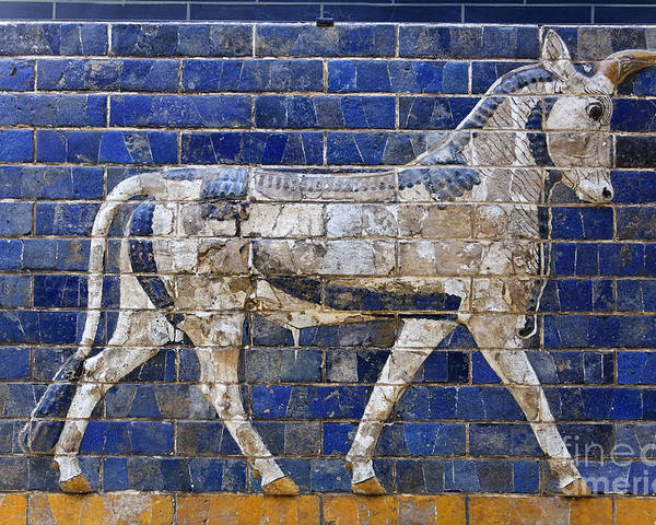 Ishtar Gate Poster featuring the photograph Relief From Ishtar Gate In Babylon by Robert Preston