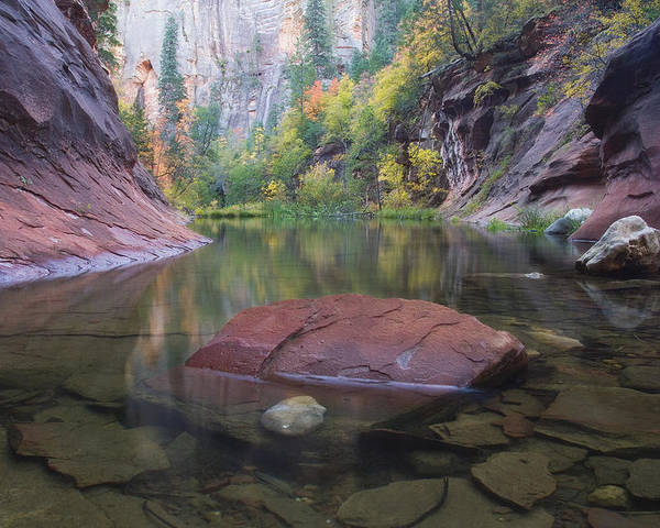 West Fork Oak Creek Canyon Poster featuring the photograph Revisited by Peter Coskun