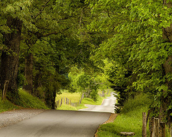 Cades Cove Poster featuring the photograph Ribbon Road by Andrew Soundarajan