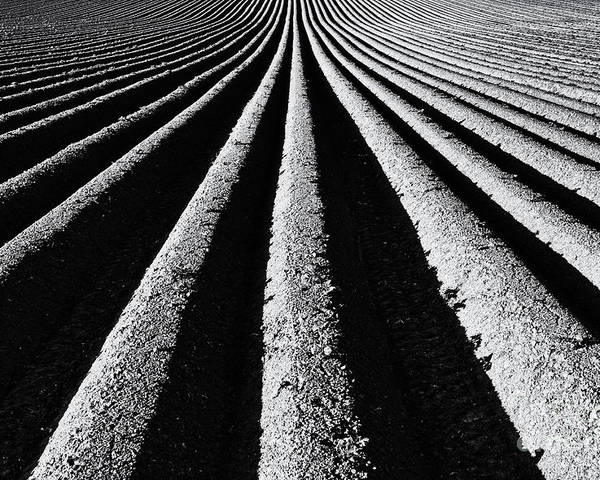 Ploughed Field Poster featuring the photograph Ridge And Furrow by Tim Gainey