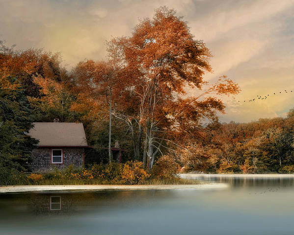 Landscape Poster featuring the photograph River View by Robin-Lee Vieira