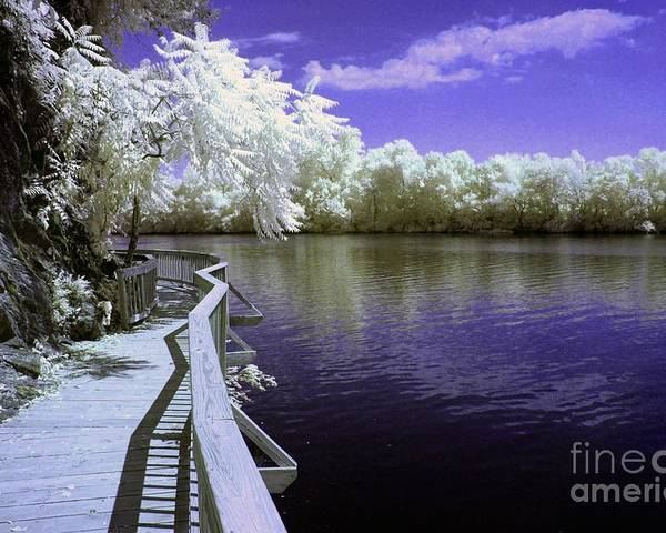 Infrared Poster featuring the photograph River Walk by Paul W Faust - Impressions of Light