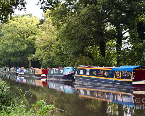 August Poster featuring the photograph River Wey Navigation by Lana Enderle