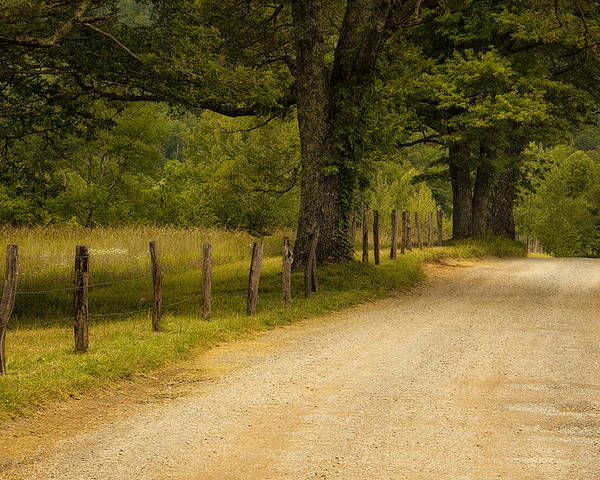 Cades Cove Poster featuring the photograph Road In The Smokies by Andrew Soundarajan