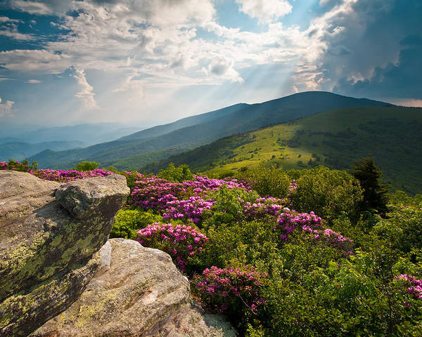 Appalachian Trail Poster featuring the photograph Roan Mountain From Appalachian Trail Near Jane's Bald by Dave Allen