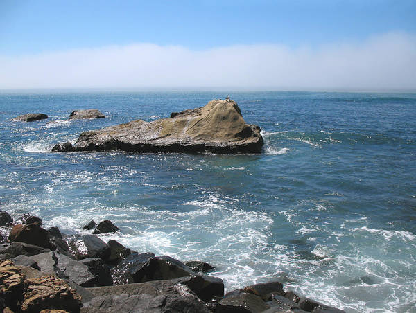 Dana Point Poster featuring the photograph Rock Island On California Coast by Connie Fox