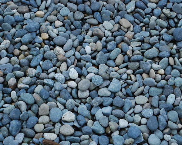 Pebbles Poster featuring the photograph Rocky Beaches by Breanna Calkins