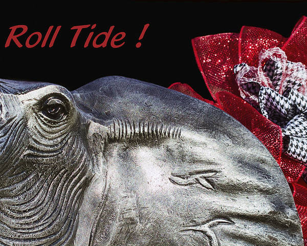Alabama Football Poster featuring the photograph Roll Tide - 14 Time National Champions by Kathy Clark