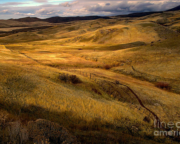 Landsacape Poster featuring the photograph Rolling Hills by Robert Bales