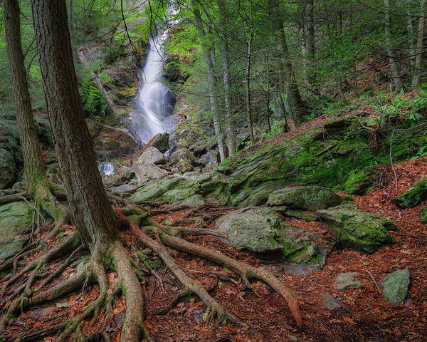 Race Brook Falls Poster featuring the photograph Rough Terrain by Bill Wakeley