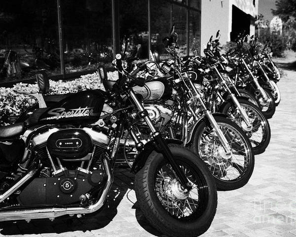 Harley-davidson Poster featuring the photograph Row Of Harley Davidson Motorbikes Including Sportster Outside Motorcycle Dealership Orlando Florida by Joe Fox