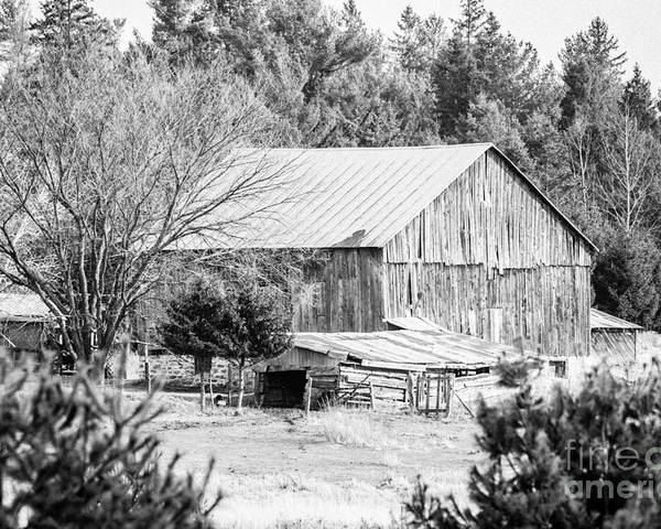 Poster featuring the photograph Rustic Old Barn by Cheryl Baxter