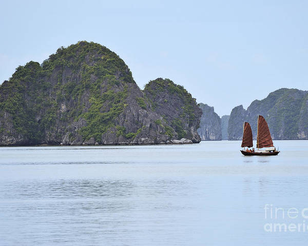 Junk Poster featuring the photograph Sailing Junk Boats In Halong Bay by Sami Sarkis