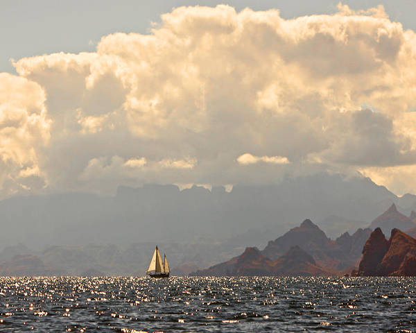 Seascape Art Poster featuring the photograph Sailing The Sea Of Cortez by Kandy Hurley