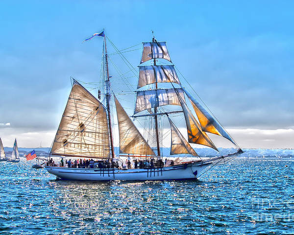 Star Of India Poster featuring the photograph Sails by Baywest Imaging