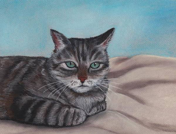 Cat Poster featuring the painting Sam by Anastasiya Malakhova