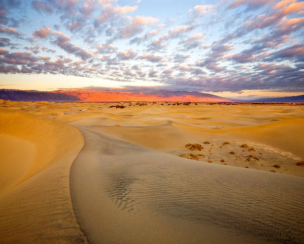 Death Valley Photographs Poster featuring the photograph Sand Dune Sunrise by David Forster