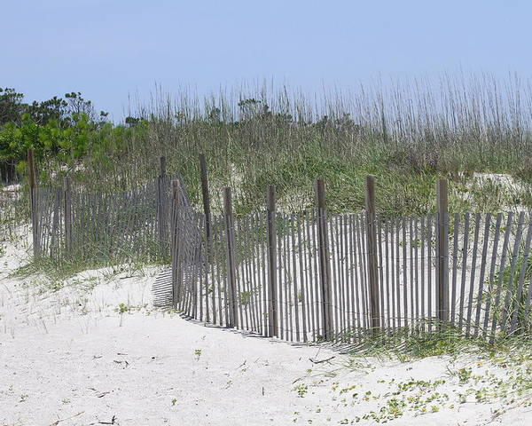 Obx Poster featuring the photograph Sand Fence At Cape Lookout by Cathy Lindsey