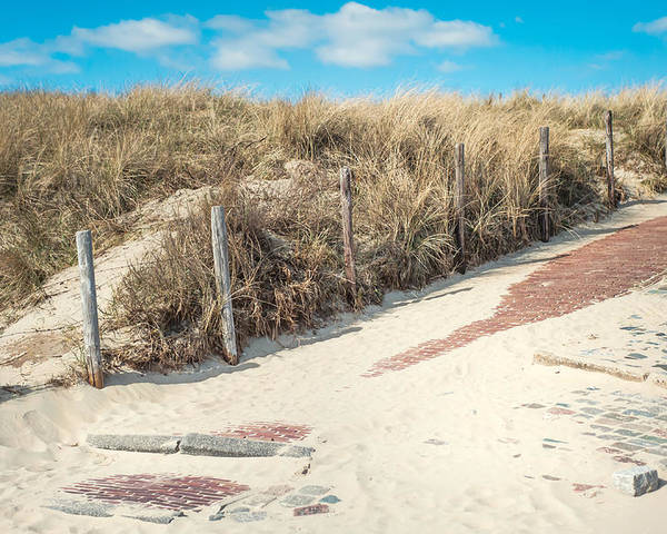 Nature Poster featuring the photograph Sandy Dunes In Holland by Jenny Rainbow